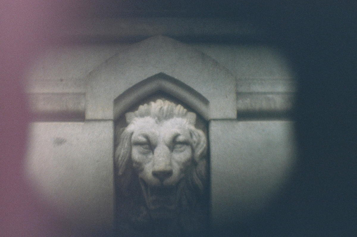 A photo of a stone lion face