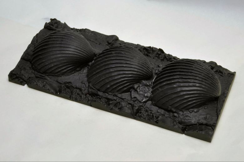 Pieces of the particular shells were 3D printed at 1:1 scale and used to create molds, which were cast in geopolymer materials.