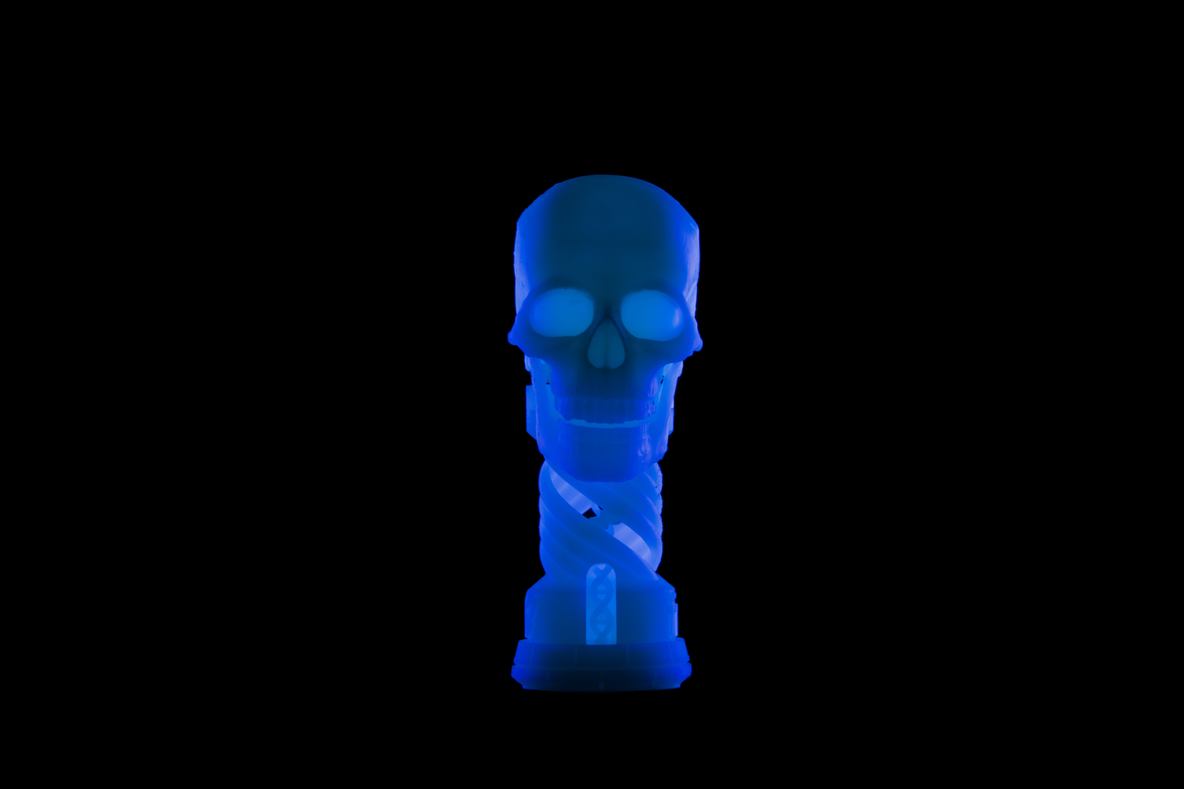 glow in the dark Halloween rook and skull