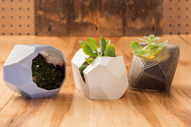 generative planter design on the Form 1+ by Will Walker