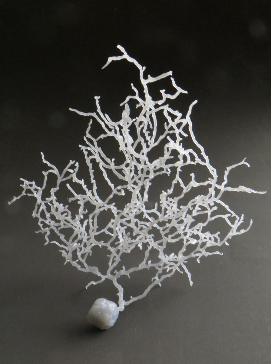 3D Printed Neuron Model