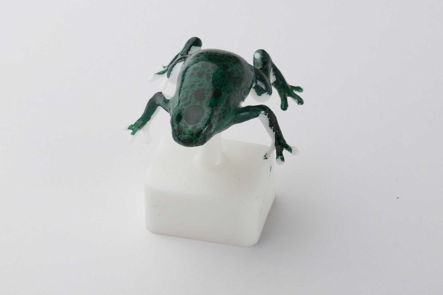 This frog model was used to demonstrate challenging geometry with big variations in slope.