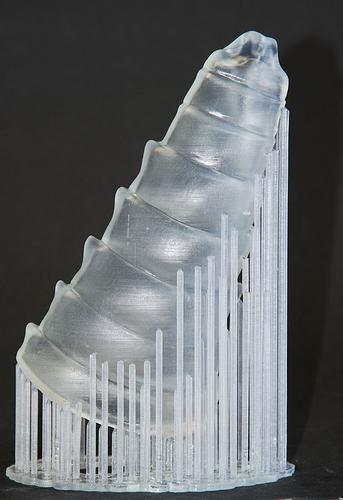 3D Printed Abdomen model
