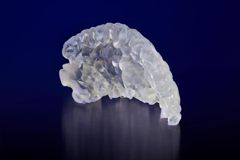 Un modello anatomico di una corteccia prefrontale stampato in 3D con l'Elastic Resin sulla Form 2. Modello fornito da Embodi3D.