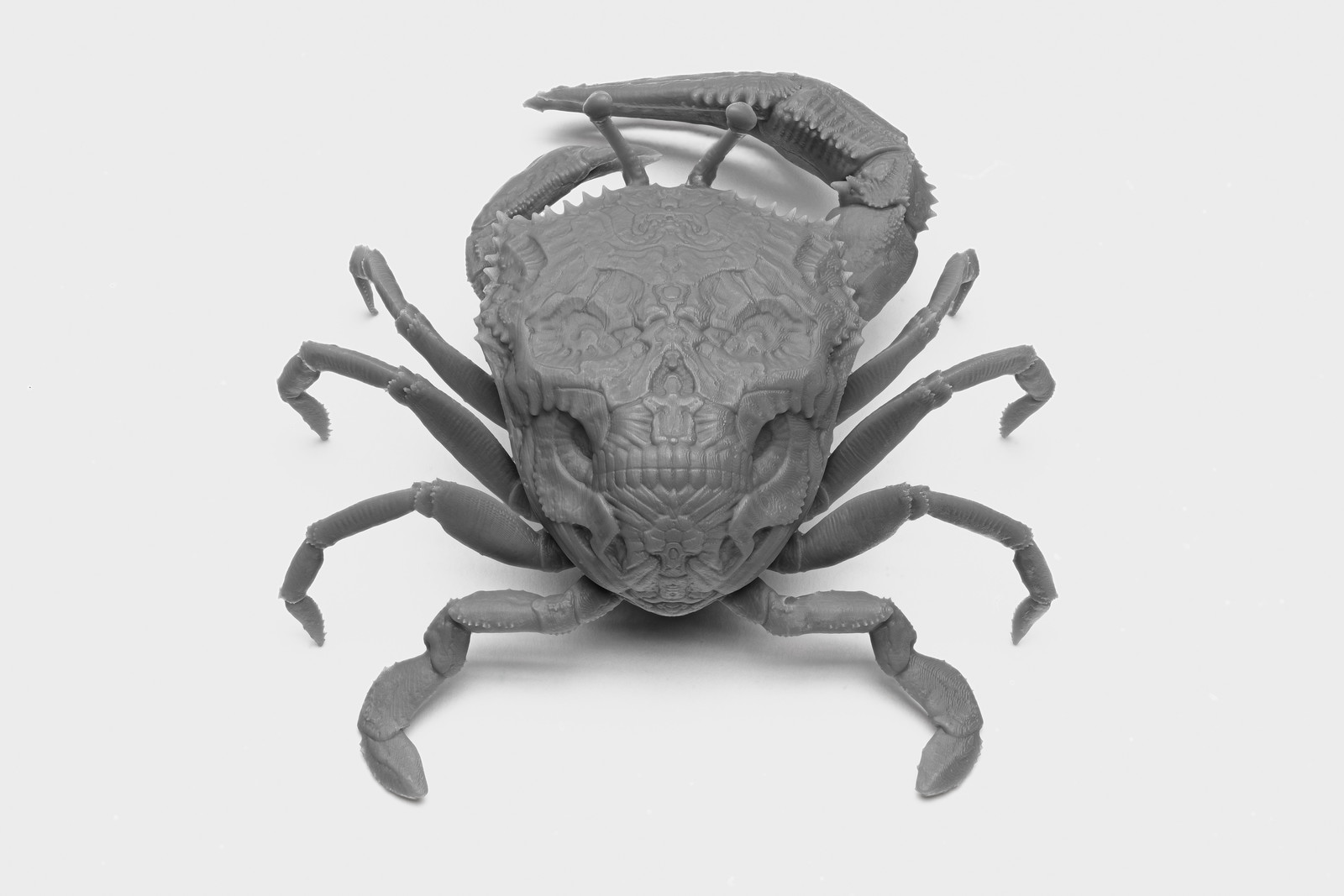 Skull Crab model designed by Tomas Wittelsbach, printed in Formlabs Grey Resin.