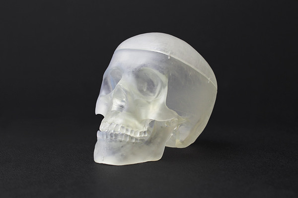 3D Printed Clear Skull Form 1